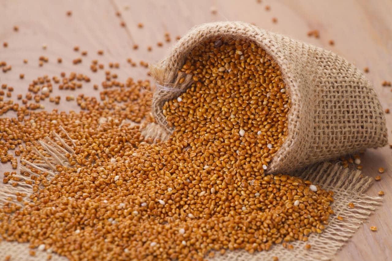 Braunhirsemehl Verwendung